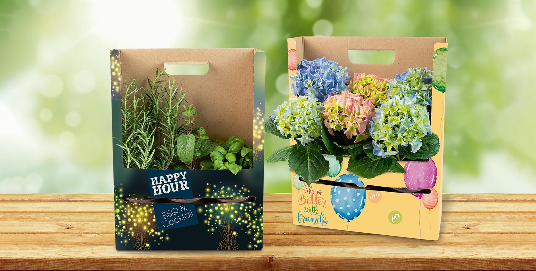 Pflanzenverpackung als Blickfang