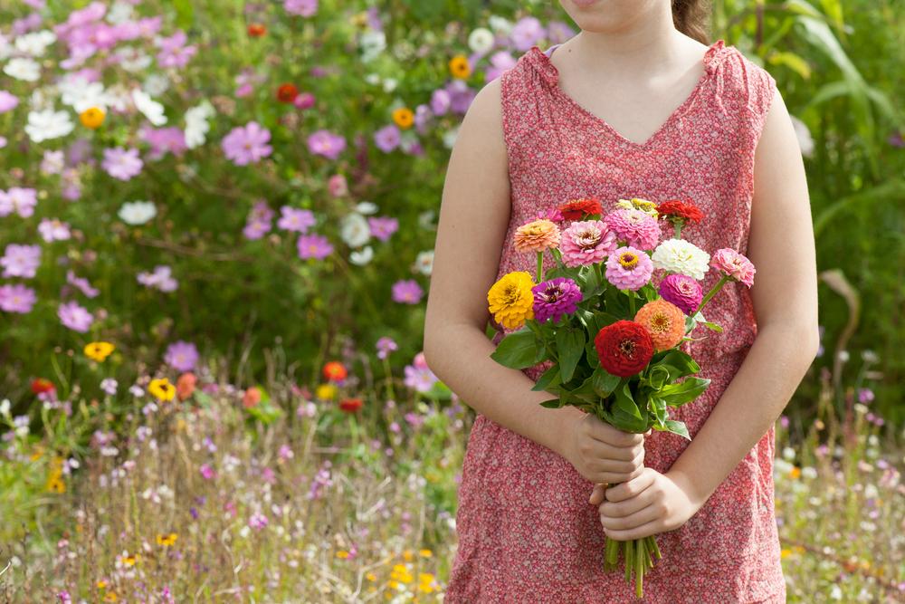 Mehr als nur ein Trend - Slow Flowers